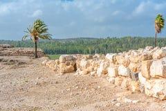 米吉多废墟 库存照片