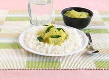 米和南瓜水鹿南印地安素食食物 库存照片