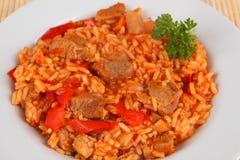 米和肉 免版税库存照片