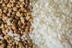米和荞麦五谷纹理 免版税库存图片