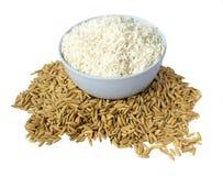 米和稻 免版税库存图片