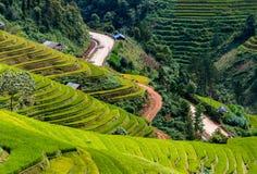 米在雨季的大阳台调遣在Mu Cang柴,安沛市,越南 米领域为移植做准备在西北部 免版税图库摄影