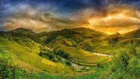 米在露台的日落, Mu张柴,安沛市,越南调遣 图库摄影