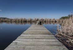 米德兰平原池塘跳船 免版税库存图片