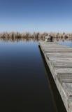 米德兰平原池塘跳船 库存图片