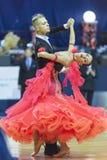 米斯克白俄罗斯, 2014年10月5日:Bol专业舞蹈夫妇  免版税库存图片