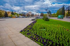米斯克,白俄罗斯- 2018年5月01日:关闭五颜六色的花有看法在独立大道中央街道  免版税库存图片