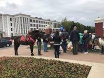米斯克,米斯克,白俄罗斯, 2017年7月3日;城市假日,美国独立日 骑乘马和小马在入口附近对公园 库存照片