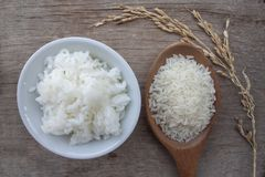 米是泰国的主要食物 免版税图库摄影