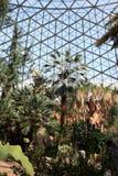 米歇尔公园园艺保存性圆顶,密尔沃基,WI 库存图片