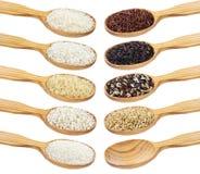 米汇集 米的不同的类型在白色背景隔绝的木匙子的 免版税库存图片
