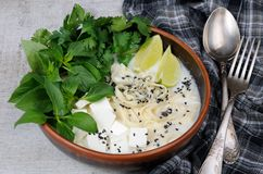 米汤用面条和豆腐 库存照片