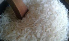 米白色谷物食物谷类 图库摄影