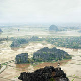 米的惊人的全景视图调遣, Ninh Binh,越南 库存图片