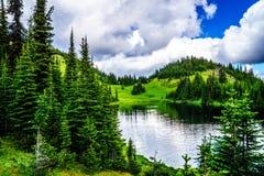 1995米的海拔的Tod湖在托德山附近上面的在Shuswap高地的 库存图片