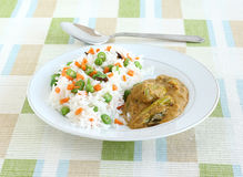 米肉饭和咖喱 库存照片