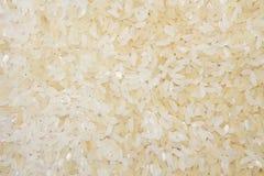 米背景 免版税库存图片
