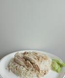 米蒸与鸡 免版税图库摄影