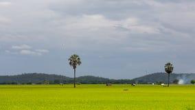 米调遣风景视图和山背景 免版税库存照片