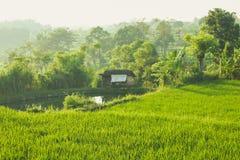 米领域、小屋和池塘 免版税图库摄影