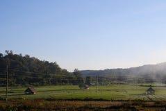 米领域和山在乡下 免版税库存图片