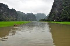 米领域和石灰石峭壁, Tam Coc,越南 库存照片
