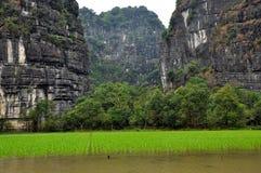 米领域和石灰石峭壁, Tam Coc,越南 免版税库存照片