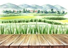 米领域和空的桌背景 水彩手拉的例证 库存例证