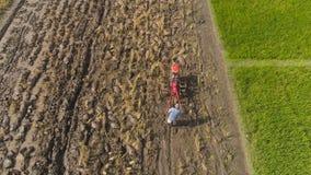 米领域的印度尼西亚农夫 库存照片