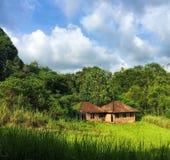 米领域的小屋 与绿色领域和森林的田园诗夏天风景在蓝天下 库存图片