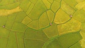 米领域美好的风景 库存图片