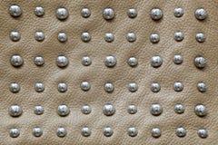 米黄皮革背景与大和发光的铆钉的由钢制成 库存图片