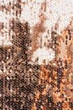 米黄纺织品顶视图与发光的衣服饰物之小金属片的 库存照片