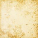 米黄背景。 免版税库存图片