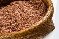 米,糙米,红色米 免版税图库摄影