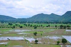 米从上面看的被归档的风景;kanchanaburi泰国 免版税库存图片