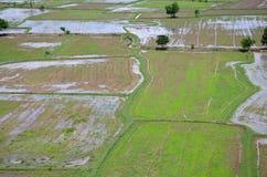 米从上面看的被归档的风景;kanchanaburi泰国 库存照片