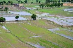 米从上面看的被归档的风景;kanchanaburi泰国 图库摄影