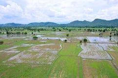 米从上面看的被归档的风景;kanchanaburi泰国 库存图片
