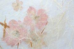 米黄和桃红色花卉背景 免版税库存照片