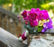米黄和紫色兰花婚礼花束  库存图片