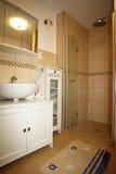米黄棕色颜色的新的卫生间 库存图片