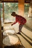 米头的小工厂越南食物的 免版税库存照片