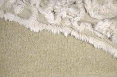 米黄羊毛-毛皮背景 图库摄影