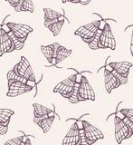 米黄蝴蝶图案传染媒介 库存例证