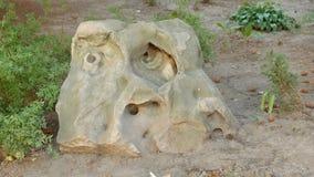类似人` s面孔的一个奇怪的形式的石头 免版税库存图片