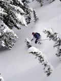 粉末滑雪 免版税库存图片