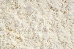 粉末蛋白质乳清 免版税图库摄影