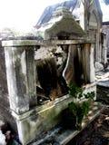 粉碎的坟茔 免版税库存图片