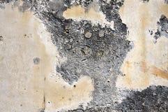 粉碎的墙壁 免版税库存图片